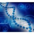 Európai kutatások és innováció – rákkutatástól az intelligens közlekedésig
