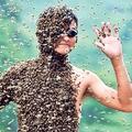 Méhek kilóra