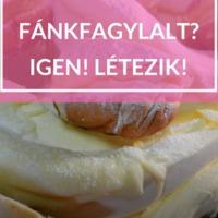 Fánkfagylalt.... még a neve is vicces:)