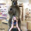 Pózolj medvével