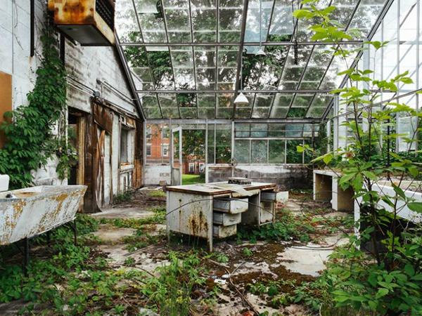 asylum6.jpg