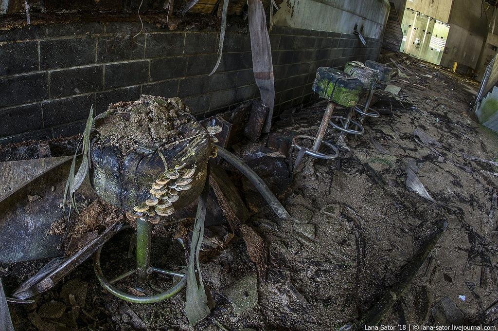 Gomba és szék (Fotó: lana-sator.livejournal.com)