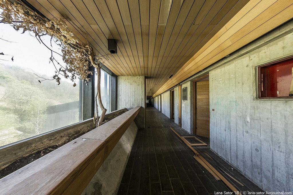 Horvát bonsai (Fotó: lana-sator.livejournal.com)