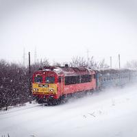 Indul a Tram-train beruházás