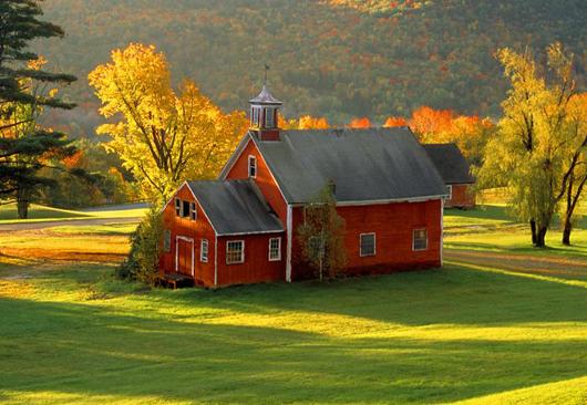 Apetit Farm