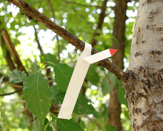 paper_kit17.jpg