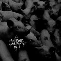 ANIMALS OVER PEOPLE - magyar zenekarok jótékonysági válogatása