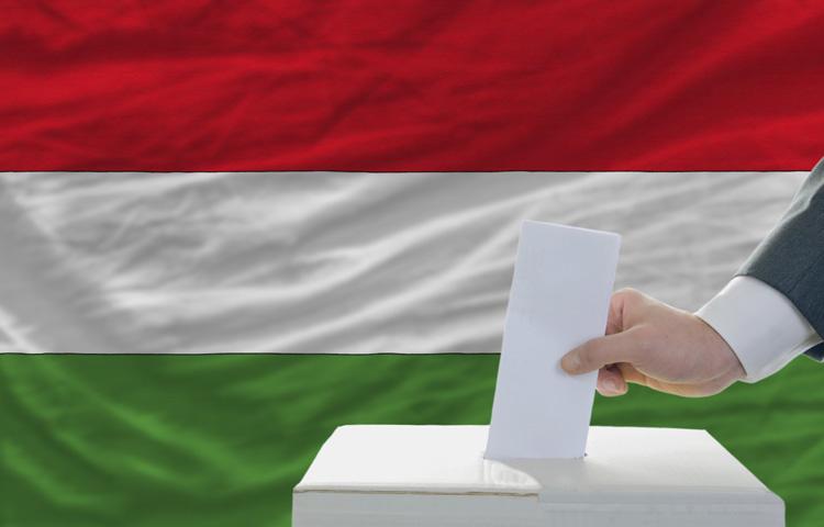 Rekordolvasottság a Feminán - A választás a nőket sem hagyta hidegen