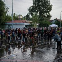 A bevándorlás és a magyar nyilvánosság