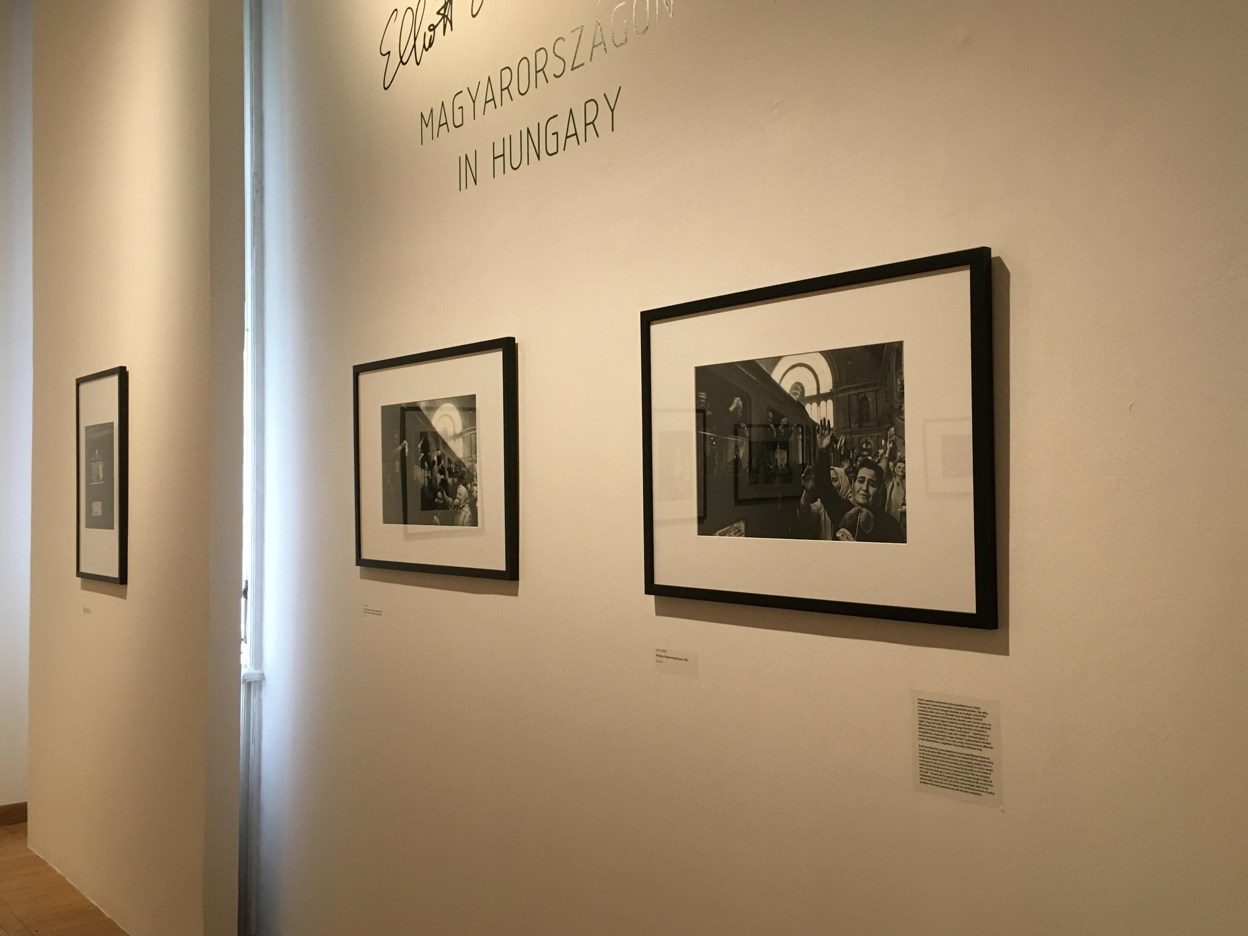 Elliott Erwitt Magyarországon - Mai Manó Ház. Kiállításbelső. Fotó: Fényerő Blog