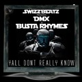 Swizz Beatz ft. Busta Rhymes & DMX- Ya'll Don't Really Know