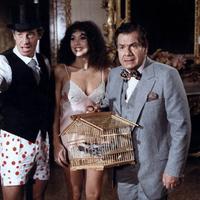Szabadlábon Velencében (1980)