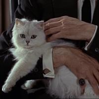 Top 007 - A leggenyább genyák