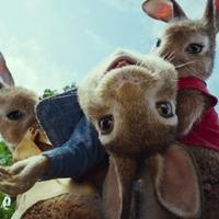 Hosszúra NYÚLt házibuli - Peter Rabbit előzetes