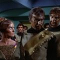 Star Trek 3.évad 7.rész A békegalamb napja