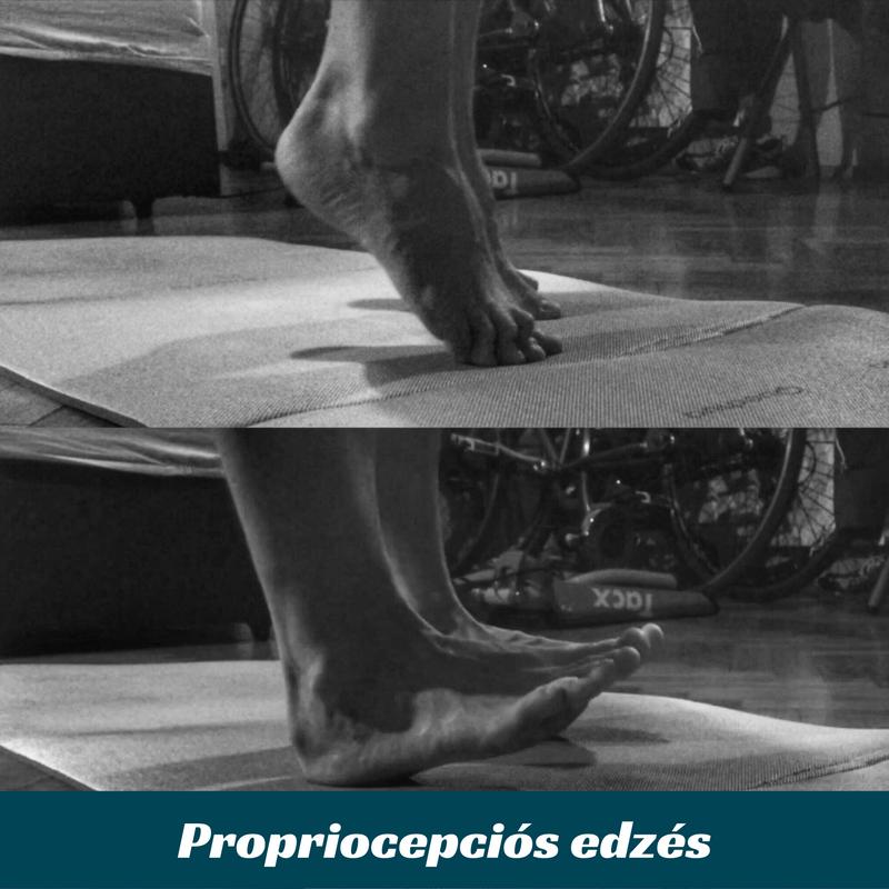 procp.png