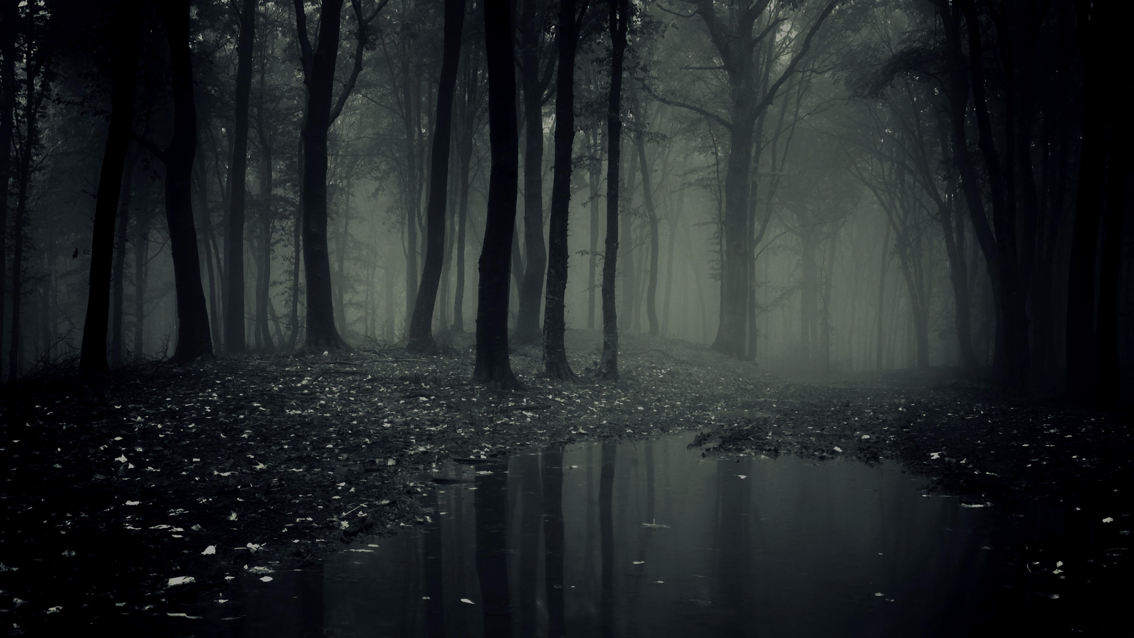 1003718-dark.jpg
