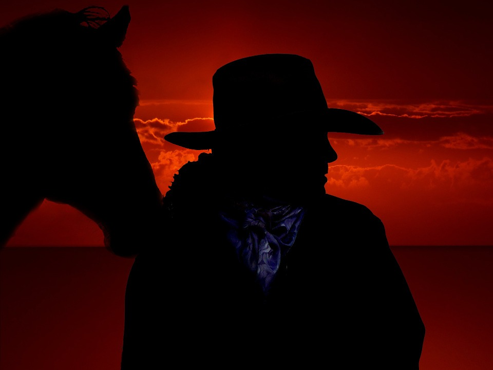 horse-301257_960_720.jpg
