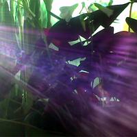 fénysuhanás