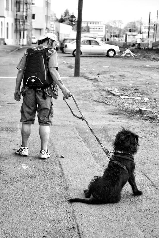 roman-tripler-kutya-12.jpg