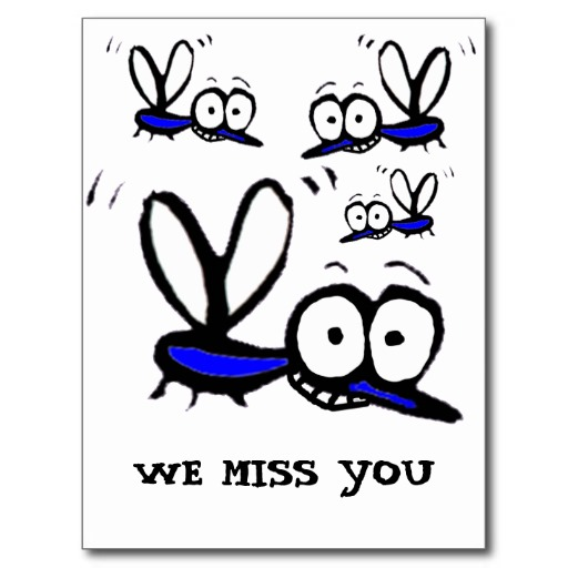 funny_cartoon_mosquito-r1e1b3c77b838409bb34b8364a734abc1_vgbaq_8byvr_512.jpg