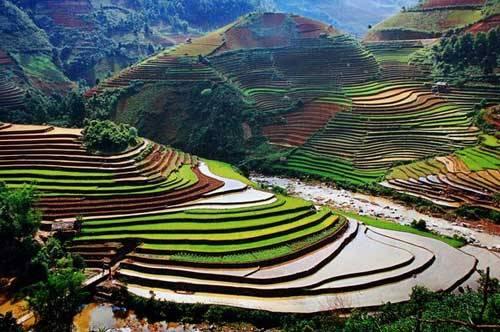 travel in vietnam.jpg