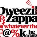 Dweezil Zappa Azt Játszik Amit Akar - Azonnal Felfüggeszteni turné, 2016