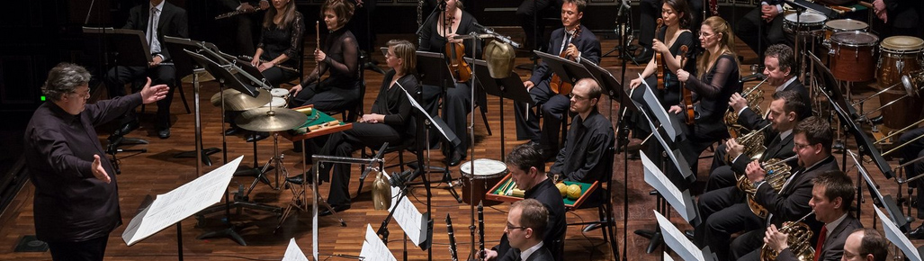 concerto_budapest_fz.jpg