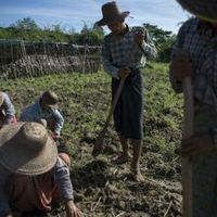 3D nyomtatással segítenek burmai mezőgazdákon