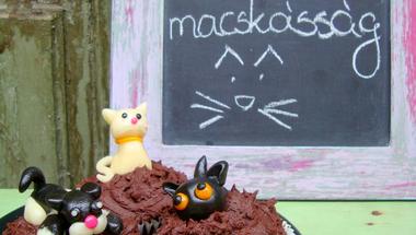 Édes macskásság és elő valentin nap csokis cupcakekkel