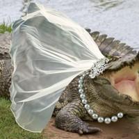 Egy mexikói polgármester feleségül vett egy krokodilt