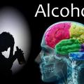 Megtalálták az alkoholfüggőség kialakulásáért felelős idegsejteket