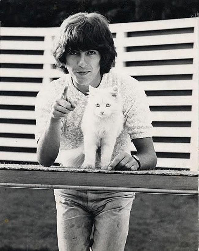Szeretett macskájával, Corkyval