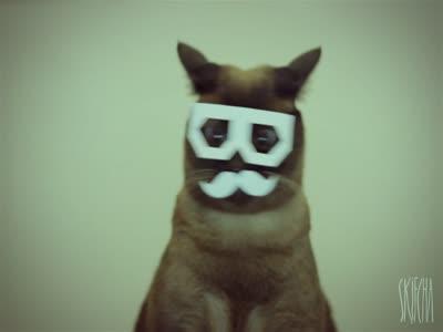 dubstep_cat_new.jpg