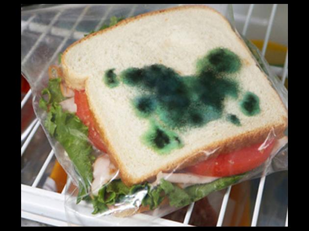 anti-theft-moldy-sandwich-bag.jpg