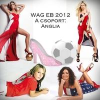 WAG EB 2012, A csoport: Anglia