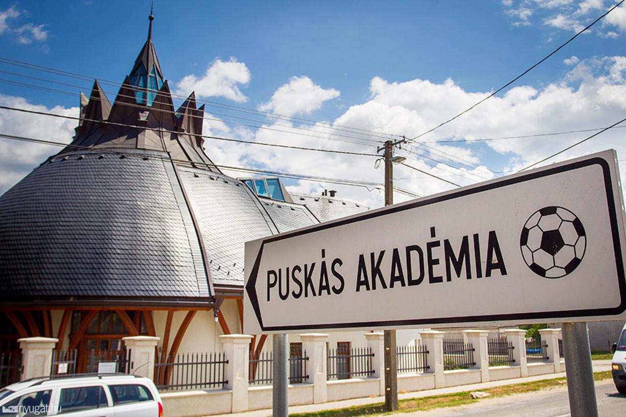 255802_puskas_akademia.jpg