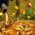 A nagy futás