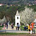 5 km tavaszi futás a szentendrei skanzenben