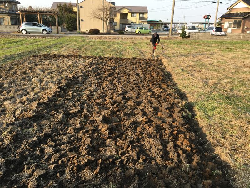 szerencsére a jobb oldali részt Gábor ásta, a bal oldalit én gányoltam..