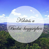 Kilátás a Budai-hegységben