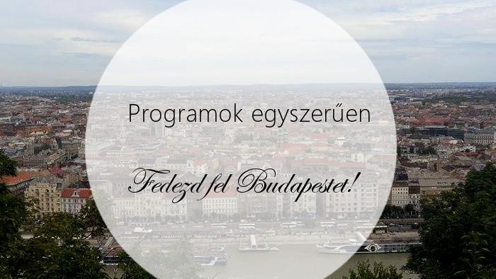prog_bud2.jpg