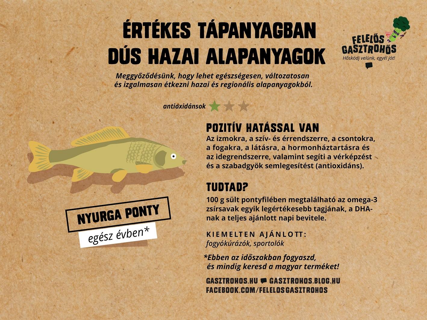 gasztrohos-superfood-kis-superfoodok-infografika-facebook-04.jpg