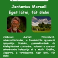 Szerelmes Földrajz - Jankovics Marcell: Eget látni, fát ölelni (2005. október)