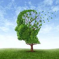 A rövidtávú memóriazavar típusai