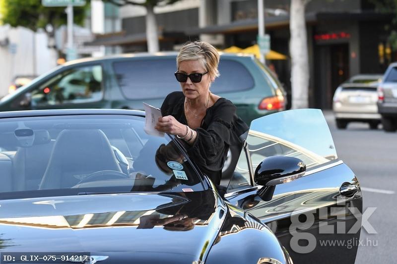 """Sharon Stone csúnyán beleszaladt egy parkolási """"mikuláscsomagba"""""""