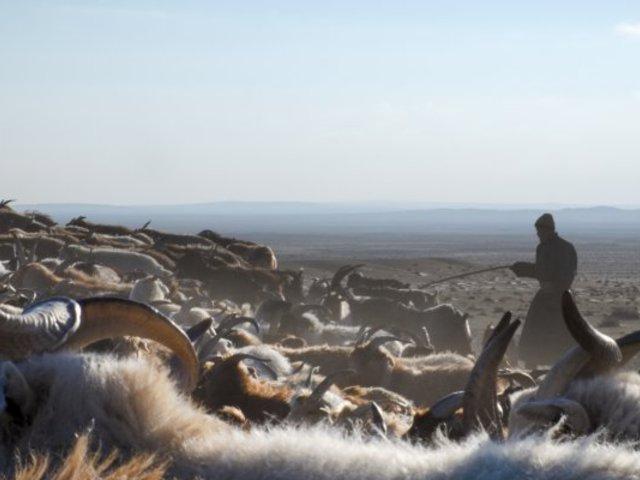 A mongol pásztorok tavasza