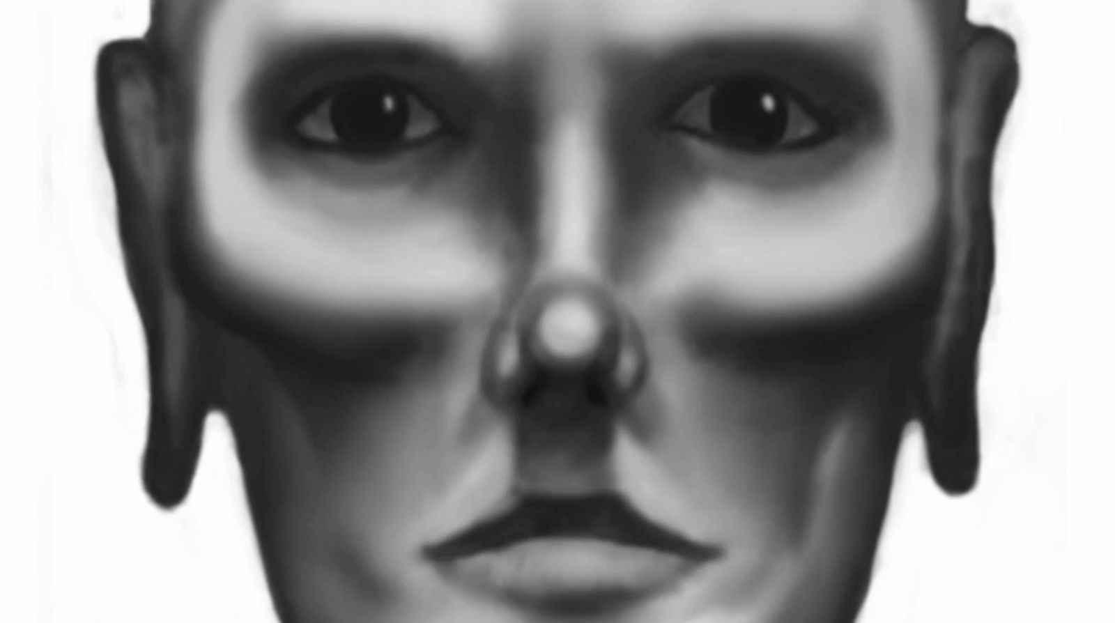 17_sentinel_face.jpg