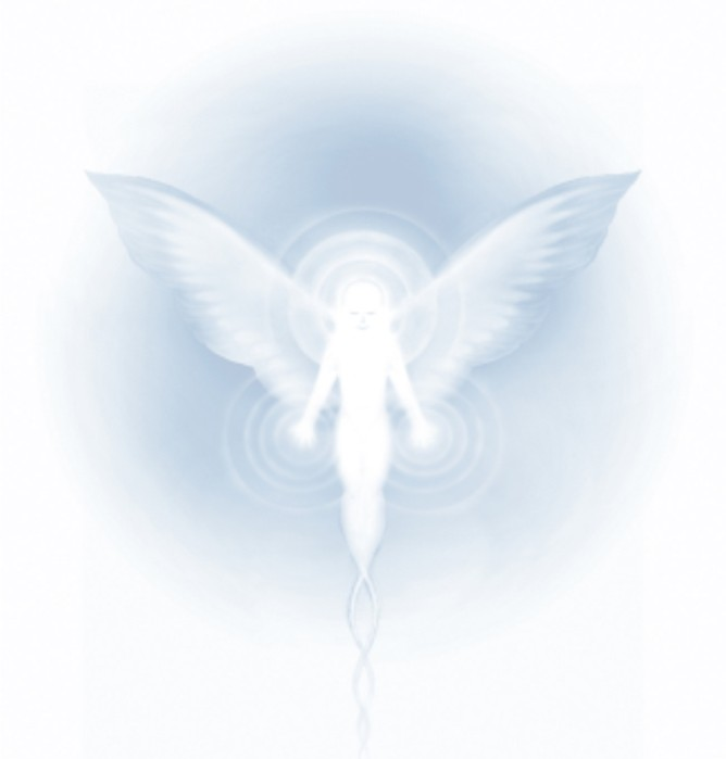 wingmaker_kicsi.jpg