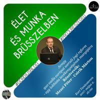 Élet és munka Brüsszelben, avagy quo vadis szerzői jogi reform?